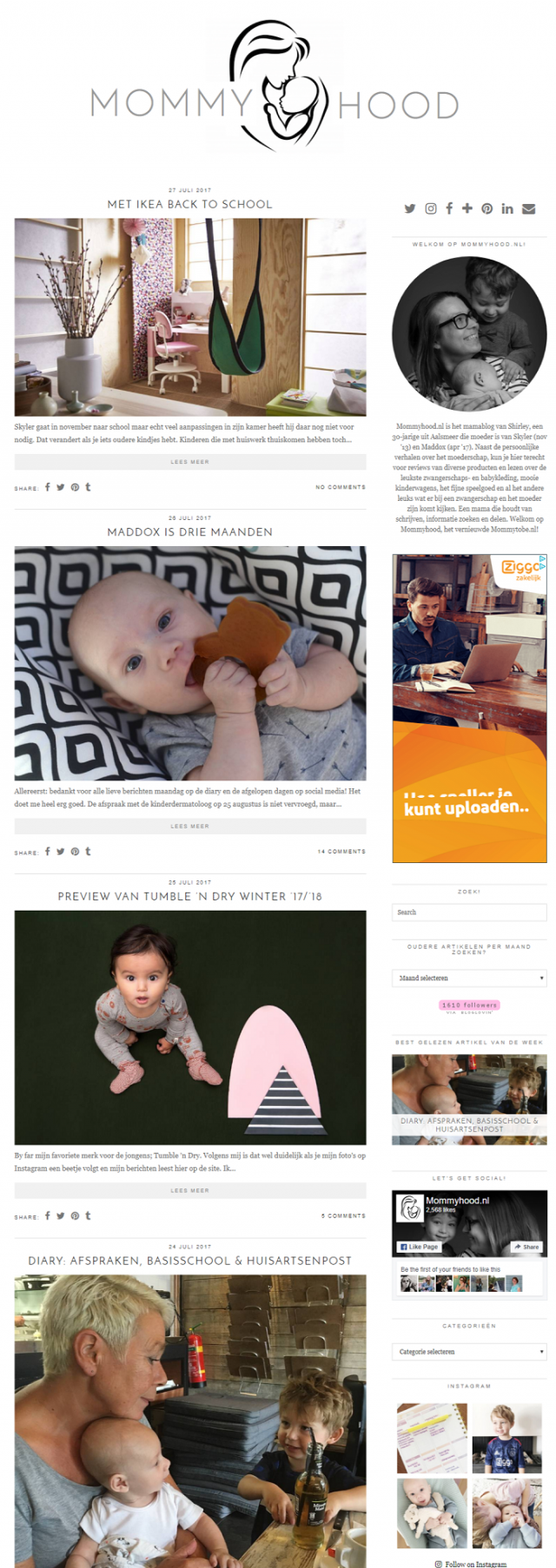 Website Mommyhood